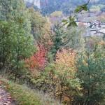 Sabato 24 Ottobre, Val Maira (2)