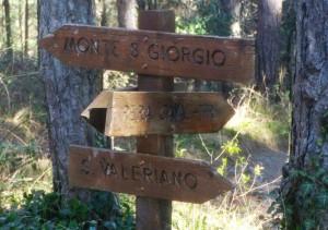 3.13_Uscita MTB_Monte San Giorgio (3)